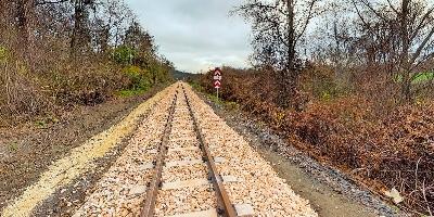 Webséta - Felcsút Alcsúti Arborétum és állomás